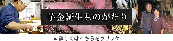 bnr-story